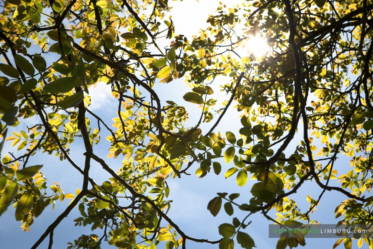 fotoshoot op locatie - fotostudio limburg